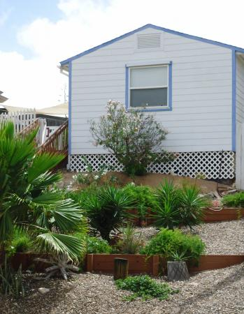 Click to enlarge image Cottage in the Dunes - Cottage in the Dunes - One Bedroom Cottage with pool